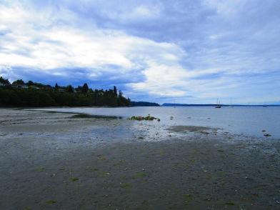 Cowichan Bay (27)