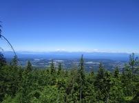 Mount Benson (4)
