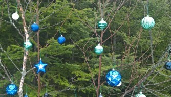 Festive neighbourhood trees