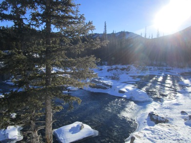 Elbow Falls in winter