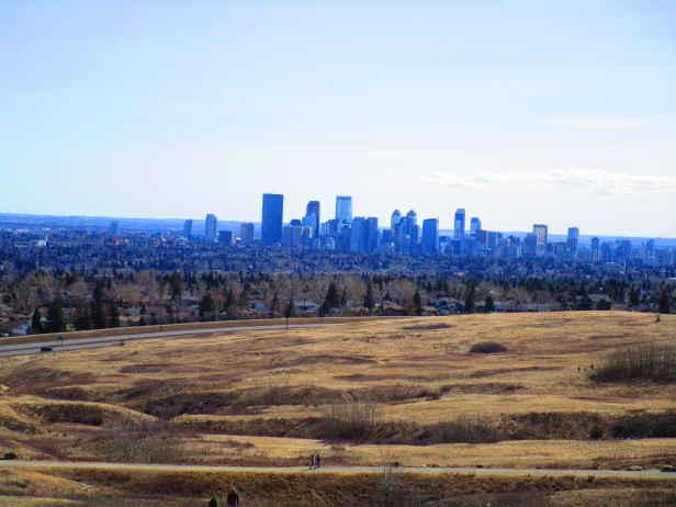 Nose Hill 26 (13)