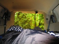 View from the van