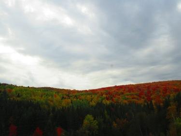 New Brunswick (5)