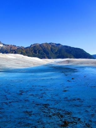 Mendenhall Glacier, Juneau,Alaska