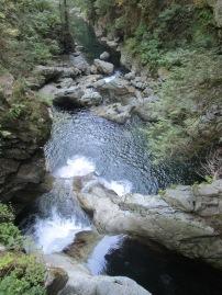 Lynn Valley (6)
