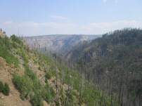 Myra Canyon (42)