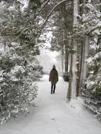 Halifax Public Gardens (19)
