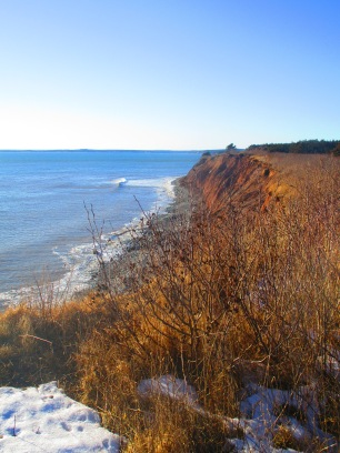 Lawrencetown Beach and Atlantic trail (62)